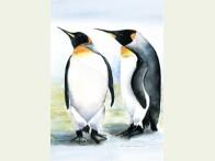 Floris Twee Pinguïns