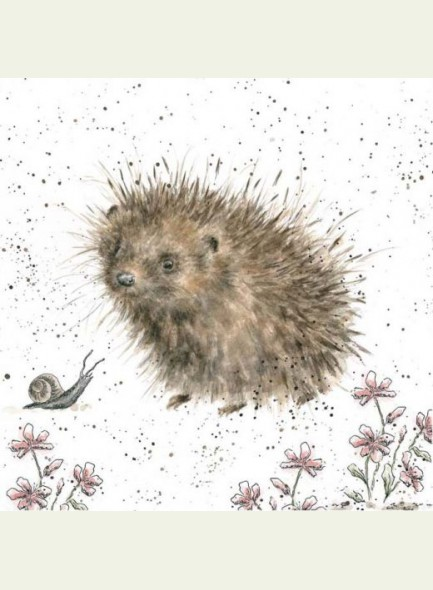 Wrendale Designs kaart A Prickly Encounter