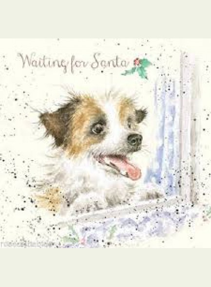 Wrendale Designs Kerstkaart  waiting for Santa